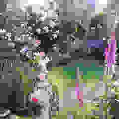 My Cheshire Garden Classic style gym by Caroline Benedict Smith Garden Design Cheshire Classic
