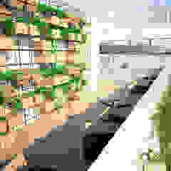minimalist style balcony, porch & terrace by SANT1AGO arquitectura y diseño Minimalist