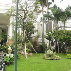 TAMAN TROPIS MODERN Taman Klasik Oleh NISCALA GARDEN | Tukang Taman Surabaya Klasik