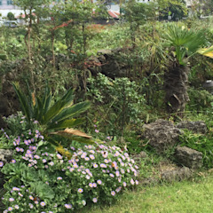 Modern Garden by MetaPhora Co.,LTD Modern