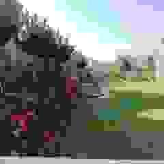 Jardines mediterráneos de Gorgeous Gardens Mediterráneo
