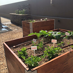 Organic Kitchen Garden with recycled wood planters Country style garden by Acton Gardens Country Wood Wood effect