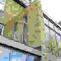 Double height crittall style extension HollandGreen Будинки