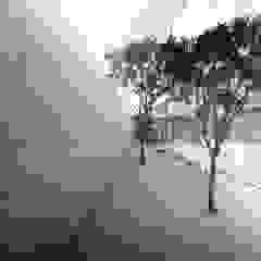 S-House Taman Minimalis Oleh KERA Design Studio Minimalis