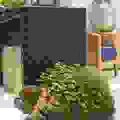 Interart Design de Interiores Modern style conservatory Limestone Black