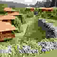 RUSTICASA | Quinta das Eiras | Madeira por Rusticasa Tropical Madeira Acabamento em madeira