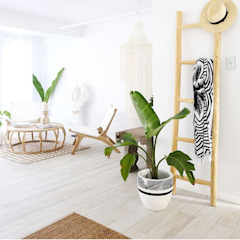 CapeTown Chair in white : tropical  by Atelier Lane   Interior Design, Tropical Wood Wood effect