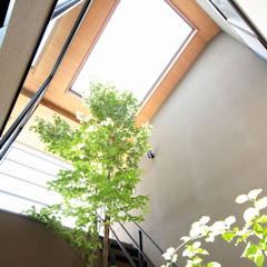 من TEKTON | テクトン建築設計事務所 إنتقائي خشب Wood effect