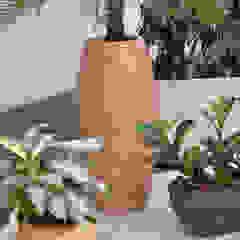 Holz, Moos und vieles mehr.... Moderne Krankenhäuser von BAUMHAUS GmbH Raumbegrünung Pflanzenpflege Modern