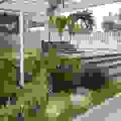 Tropical style garden by BARRAGAN ARQUITECTOS Tropical