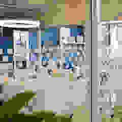 Seeff Offices by Studio Mitchell Modern
