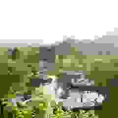 Vườn phong cách chiết trung bởi Co*Good Design Co. Ltd. Chiết trung