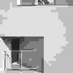 Moderne Fenster & Türen von TODOT Modern