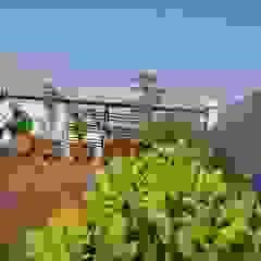 Thiết Kế Nhà Ống 2 Tầng 50m2 Với Chi Phí Tiết Kiệm 500 Triệu Hiên, sân thượng phong cách hiện đại bởi Công ty TNHH Xây Dựng TM – DV Song Phát Hiện đại