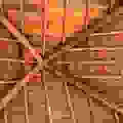 من Pedro de Almeida Carvalho, Arquitecto, Lda ريفي خشب Wood effect