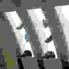 Loja Coexist Lojas e Espaços comerciais minimalistas por Arquigraphos Minimalista