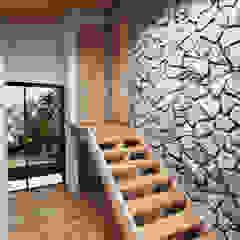 de Arquitecto Javier Escobar Tropical Piedra