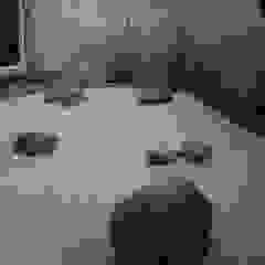Jardines asiáticos de Japanese Garden Concepts Asiático