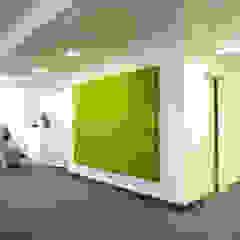 de BAUMHAUS GmbH Raumbegrünung Pflanzenpflege Clásico