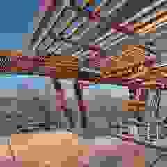 Highveldt House, Cradle of Humankind by Van der Merwe Miszewski Architects Modern Wood Wood effect