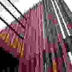 一級建築士事務所A-SA工房 Modern Walls and Floors Wood Wood effect
