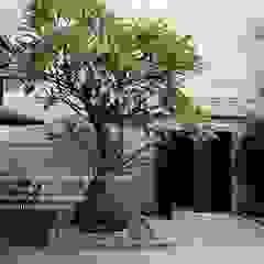 景觀設計 庭院造景 根據 洄瀾柴房 景觀工作坊 貨櫃屋改造 隨意取材風