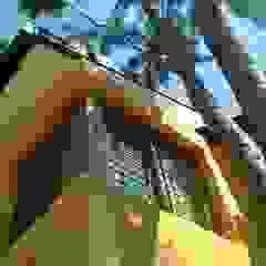 Casa LF Puertas y ventanas modernas de Módulo 3 arquitectura Moderno Madera Acabado en madera