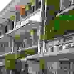 10 Gambar Desain Taman Vertikal (Vertical Garden) Kantor & Toko Modern Oleh Tukang Taman Surabaya - flamboyanasri Modern
