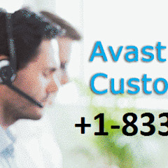 For Scanning Issues Contact 1-833-284-2444 Avast Tech Support Number by anabelsmith.988