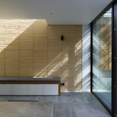 Petersen Brick House Neil Dusheiko Architects Modern living room