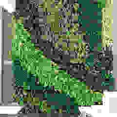 Jasa pembuatan taman menempel dinding di banjarmasin banjarbaru martapura Dinding & Lantai Tropis Oleh Jasa tukang taman gresik Tropis Bambu Green