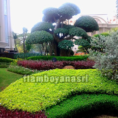 من Tukang Taman Surabaya - flamboyanasri بحر أبيض متوسط