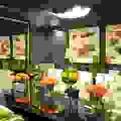 DDL Design & Decor Lab (Pty) Ltd Dining roomAccessories & decoration