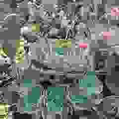 Jardines Varios de Gazul Jardines Rústico
