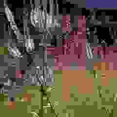 SILENT ISLAND - gepflanzte Oasen für die Auszeit in der Natur Minimalistische Veranstaltungsorte von Petra Pelz Design-natuerlich Minimalistisch