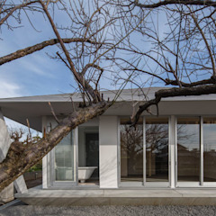 Eclectic style garden by 奥和田健建築設計事務所|okuwada architects office Eclectic