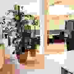 Scandinavische kantoorgebouwen van AMMON Raumbegrünung Scandinavisch