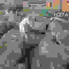 من Bizzarri Pedras بلدي