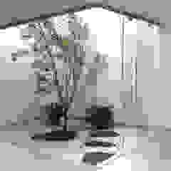 por Fensterwelt Moderno Vidro