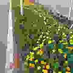 Jasa Pembuatan Taman Rumah, Perkantoran atau Gedung Oleh Gardener Landscape Industrial