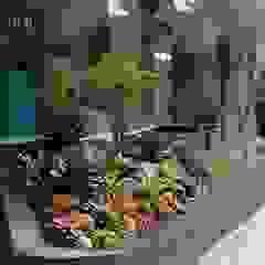 by Jasa tukang taman Asian Bamboo Green