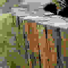 من BAUMHAUS GmbH Raumbegrünung Pflanzenpflege بحر أبيض متوسط مزيج خشب وبلاستيك