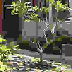 Q-House Oleh CV Berkat Estetika Tropis Kayu Wood effect