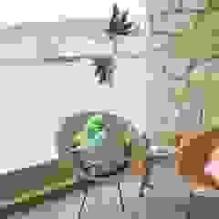 Espaços Exteriores Tangerinas & Pêssegos por Tangerinas e Pêssegos - Design de Interiores & Decoração no Porto Mediterrânico Pedra