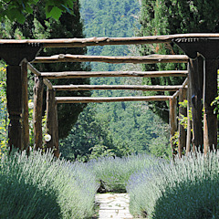 من Arkproject Camaiti & Cangi ريفي خشب Wood effect