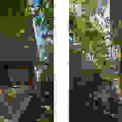 CO2WORKS Modern garden