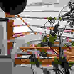 FUMIASO ARCHITECT & ASSOCIATES/ 阿曽芙実建築設計事務所 Scale Legno