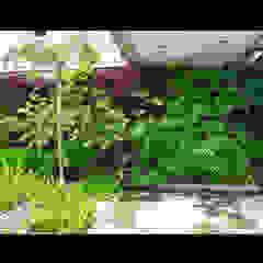 توسط Telhado Verde e Jardim Vertical SP استوایی