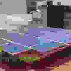 の Piensa Verde México, Querétaro, Cancún インダストリアル 金属