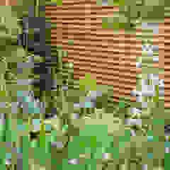 Sanctuary Garden Design in London توسط Earth Designs مدرن